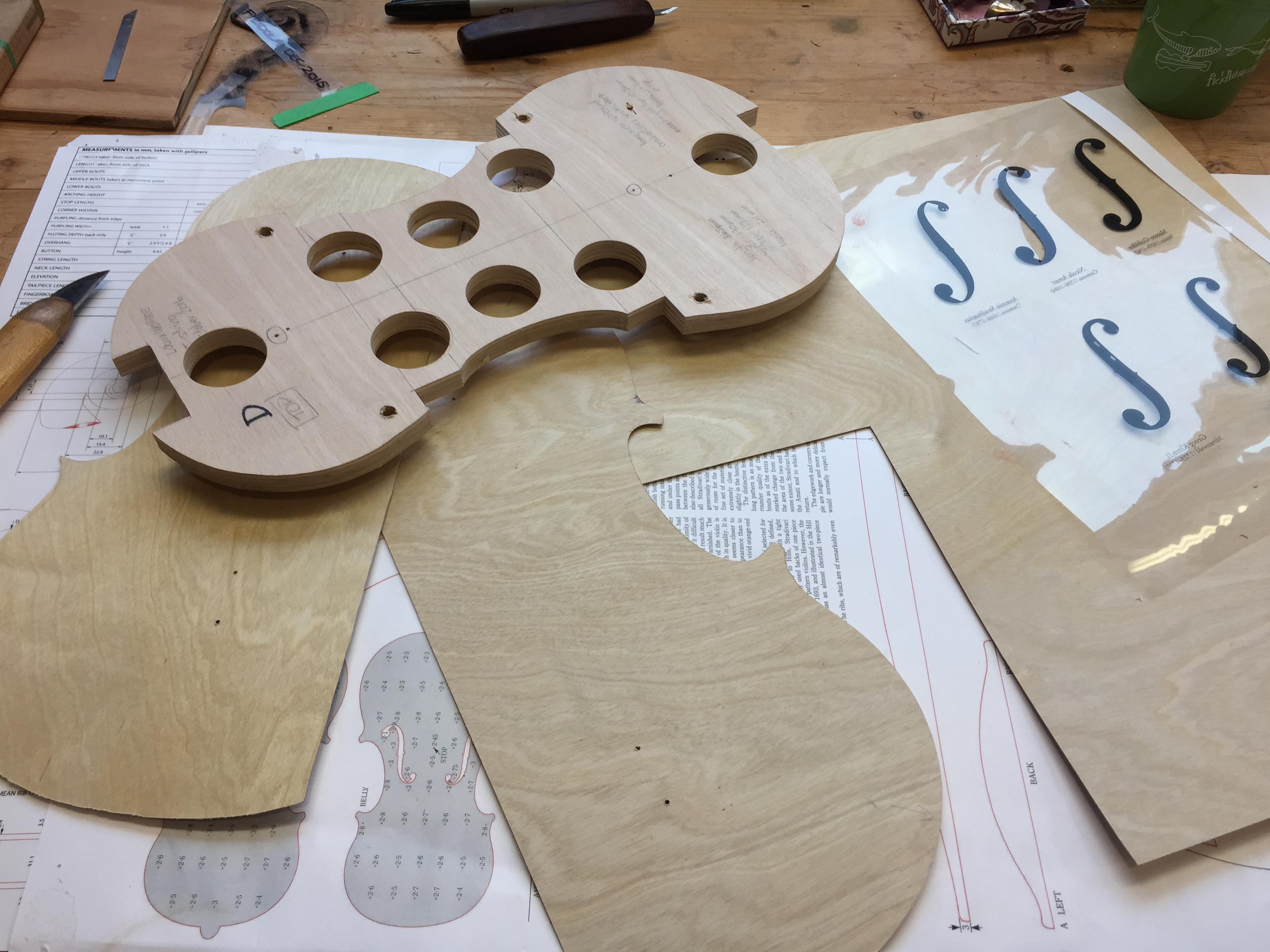 Model development and template making for new 5-string