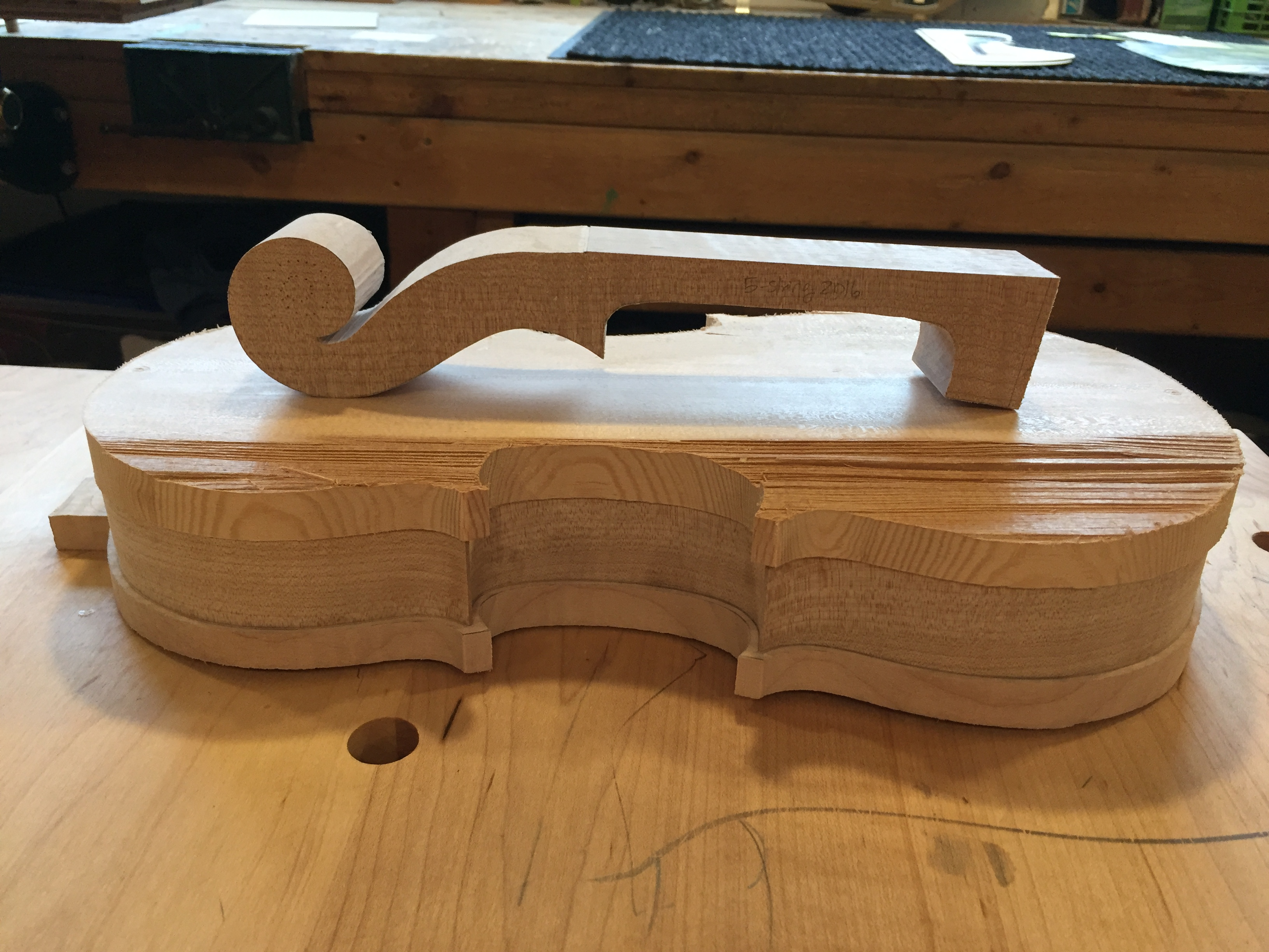5 String ribs, neck block cut out, top and back cut out.