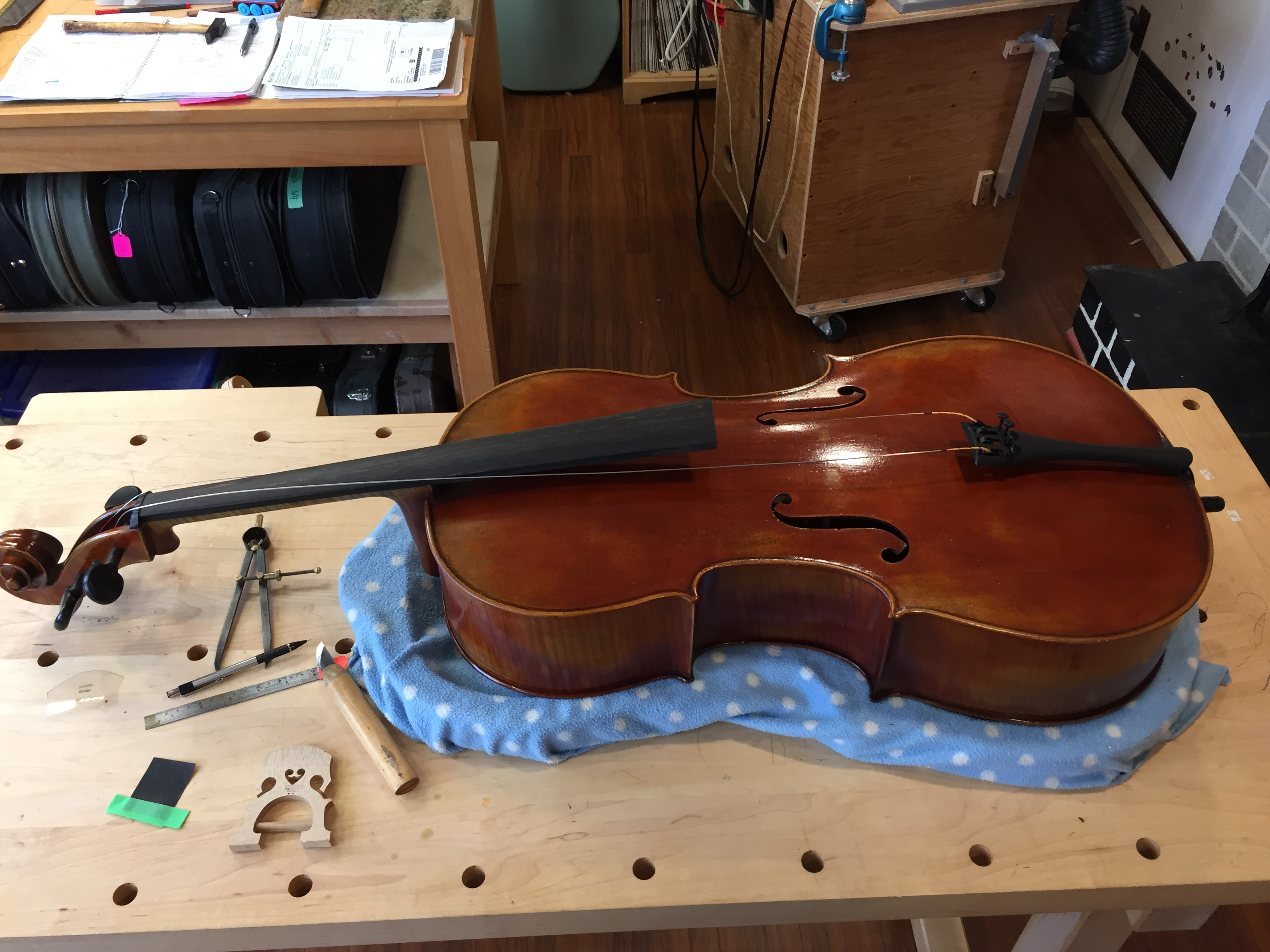 3/4 cello ready for set up